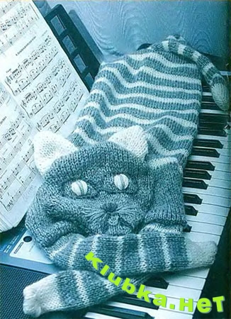 Кот - поклонник нот