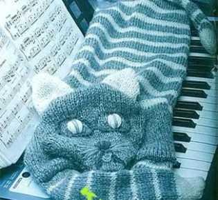 Кот — поклонник нот, связаный крючком